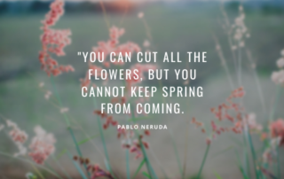 Blurred flower background with saying, You can cut down all the flowers but you can't stop spring from coming