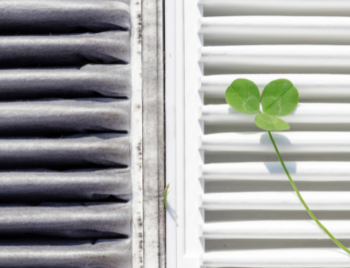 Ask Dirk: Which air cleaner should I use for optimum indoor air quality?